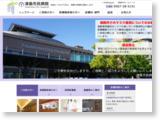 http://www.tsushimacity-hp.jp/